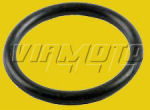 O Ring for Water Rail - Mitsubishi Galant/Legnum VR4